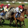 Bristol Horse Racing Weekend Bristol Two Night Stag Do Package