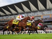 Reading Royal Ascot The Hot Favourite Two Night Stag Do Package