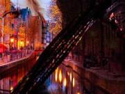 Amsterdam Stag Stitch Up
