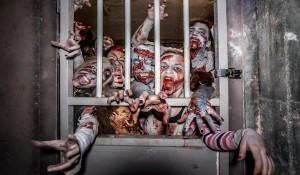 Zombie Stag Do